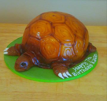 Turtle Tortoise Cake.jpg