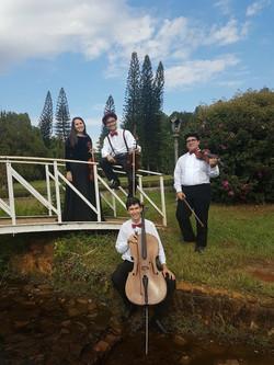 Quarteto Orpheus