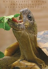 Naturalistic Keeping and breeding of hermann tortoises