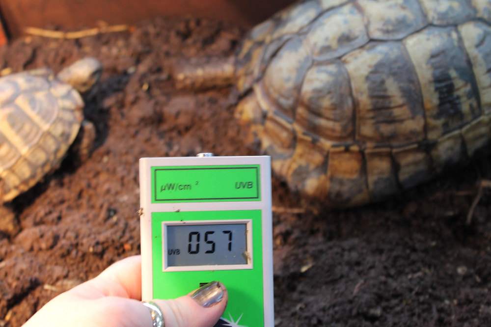 Solar Meter 6.2