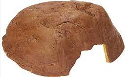 Tortoise care Reptile cave
