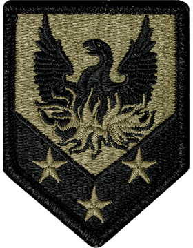 US Army OCP 110th Combat Support Brigade Patch
