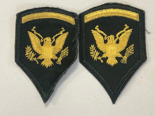 US Army Late 1950's Specialist 2nd Class Ranks - Pair