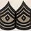 Thumbnail: US Army WW2 First Sergeant Rank - Pair