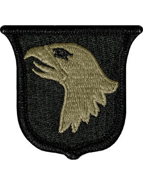 US Army OCP 101st Airborne Division Patch