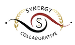 logo-synergy-collaborative-250x150.png