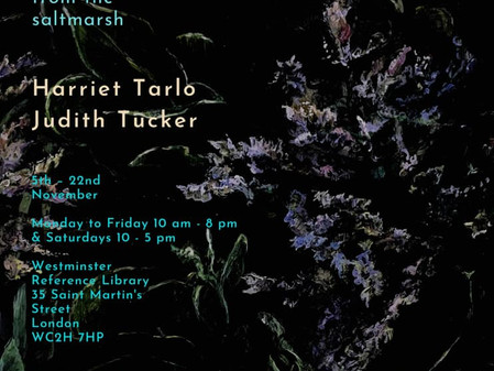 Low Lying: painting and poetry from the saltmarsh Judith Tucker and Harriet Tarlo 5th – 22nd Novembe