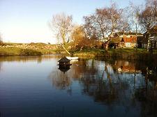 SW - Pond .jpg