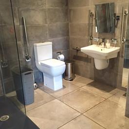 Transistional Unit Bathroom