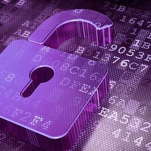 Informativa Privacy | Casale Monferrato | Viola Murmure