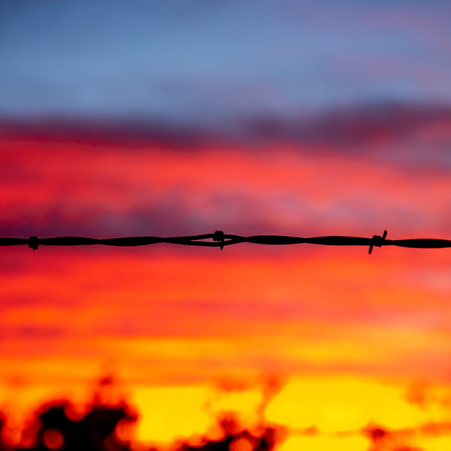 Barbed Wire Sunset