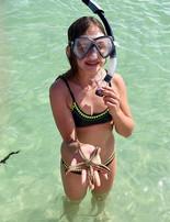 Shell Key Snorkeling St Pete