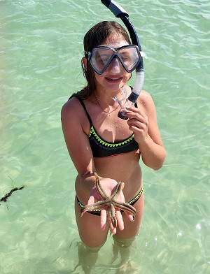 Shell Key Snorkeling St Pete