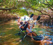 Clear-Kayak-Tour-Shell-Key-St-Pete.jpg