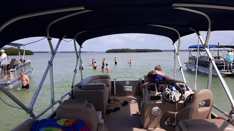 Dolphin Cruise Snorkeling Shell Key St Pete