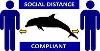 Social-Distance-Compliant.jpg