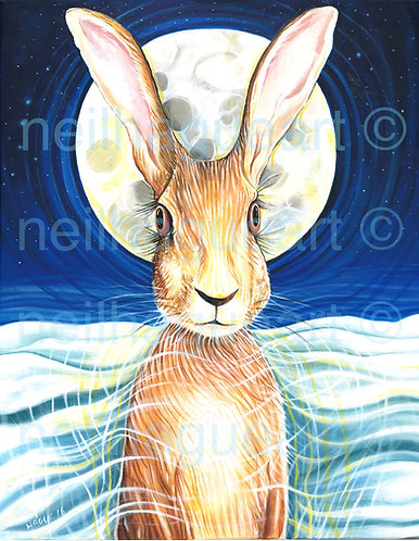 Moon Hare Canvas Print