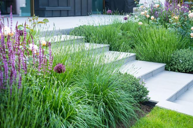 Contemporary outdoor steps