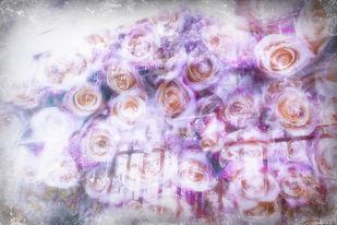 roses_lilacs_magic_2.jpg