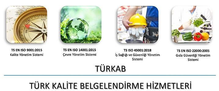 Türkab_1.png