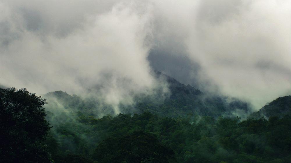 Mt. Kinabalu Sabah Malaysia
