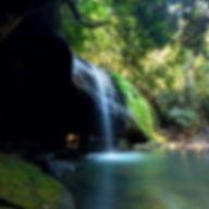 Australia Buderim Waterfall