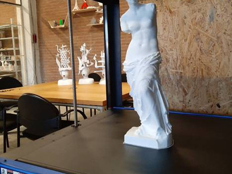55cm height Venus from a P1 owner from the Netherlands