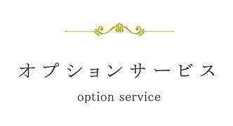 オプション_title.jpg