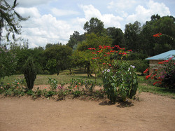 Ruanda_86