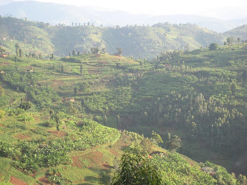 Ruanda_35