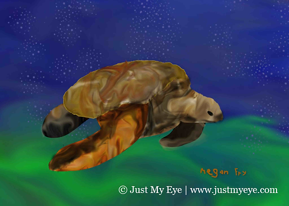 Turtle Gurgle