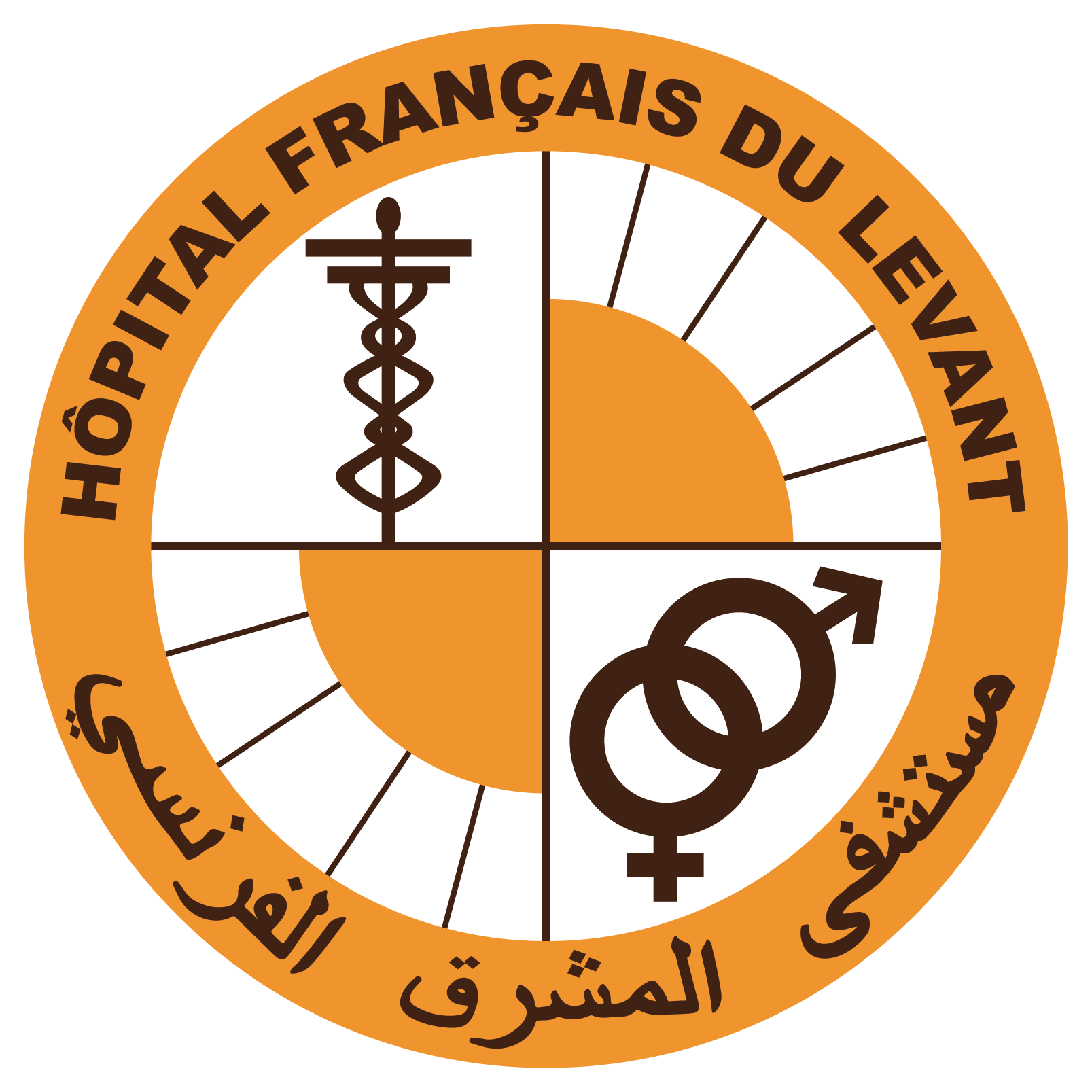 Hopital_francais_DuLevant_Logo
