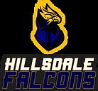 2020 EPIC - HILLSDALE FALCONS.png