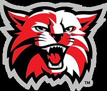 Kenton Wildcats.png