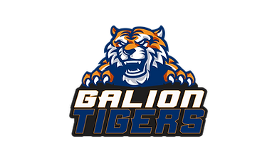 2020 EPIC - GALION TIGERS.png