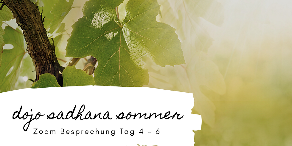 Sadhana Sommer | Besprechung Tag 4 - 6