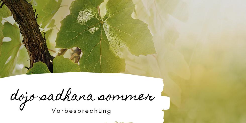 Sadhana Sommer | Vorsbesprechung