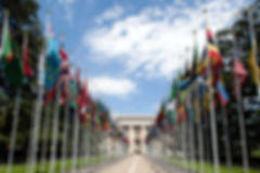 United_Nations_Flags_-_cropped.jpg