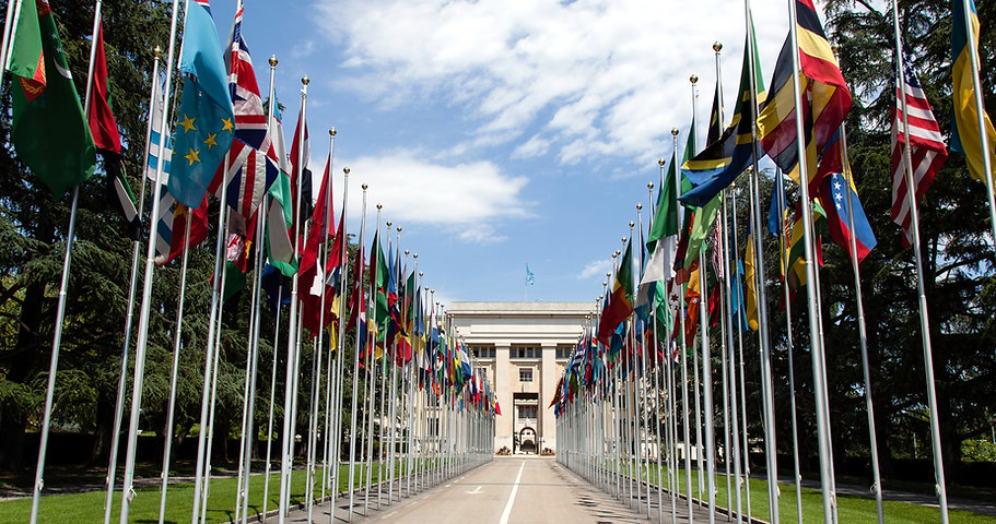 United_Nations_Flags_-_cropped_edited.jp