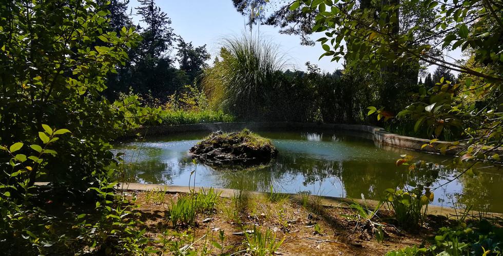 bassin chambre d'hote embarben provence