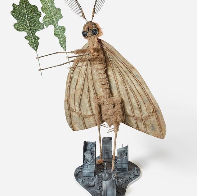 Pervasive: Gypsy Moth
