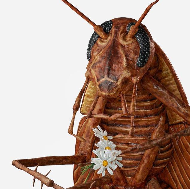 Pervasive: Cockroach (detail)