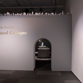Installation at Nickle Galleries, University of Calgary