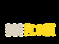 wix_logo.png