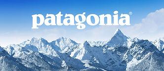 patagonia-backpacks-1.jpg