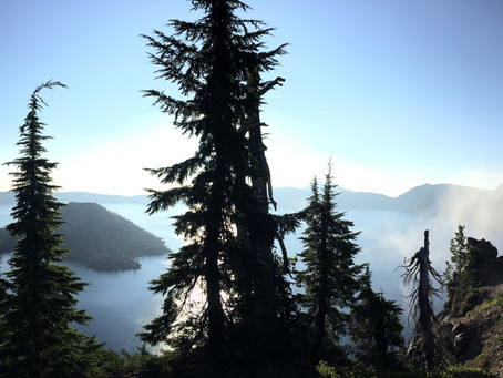 Pacific Crest Trail Diary 13: Day 93 (Shelter Cove, OR)