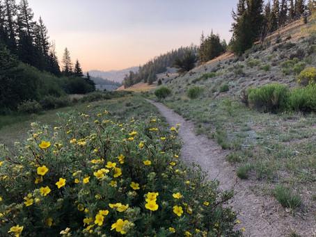 The Colorado Trail: Day 10
