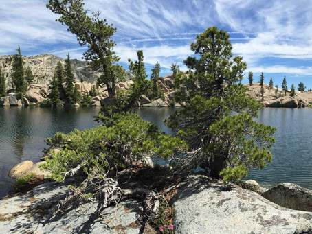 Pacific Crest Trail Diaries 6: Day 53 (Kennedy Meadows North)
