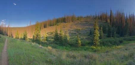 The Colorado Trail: Day 8