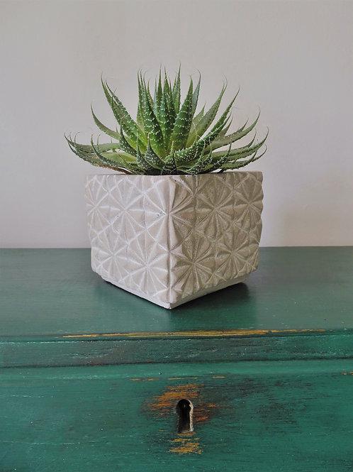 Square Concrete Planter